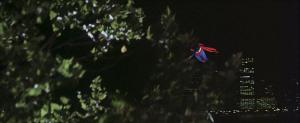 CW-STM-cat-rescue-screenshot-98