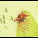 Superman 75th Anniversary Animated Short.mp4_snapshot_00.27_[2013.10.24_14.04.51]