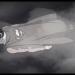 Superman 75th Anniversary Animated Short.mp4_snapshot_00.31_[2013.10.24_14.07.27]