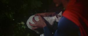 CW-STM-cat-rescue-screenshot-120