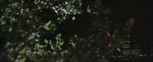 CW-STM-cat-rescue-screenshot-99
