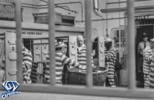 CW-STM-prison-4