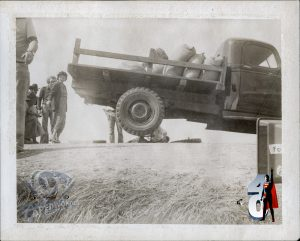 CW-STM-truck-low-angle-phyllis-smallville-polaroid